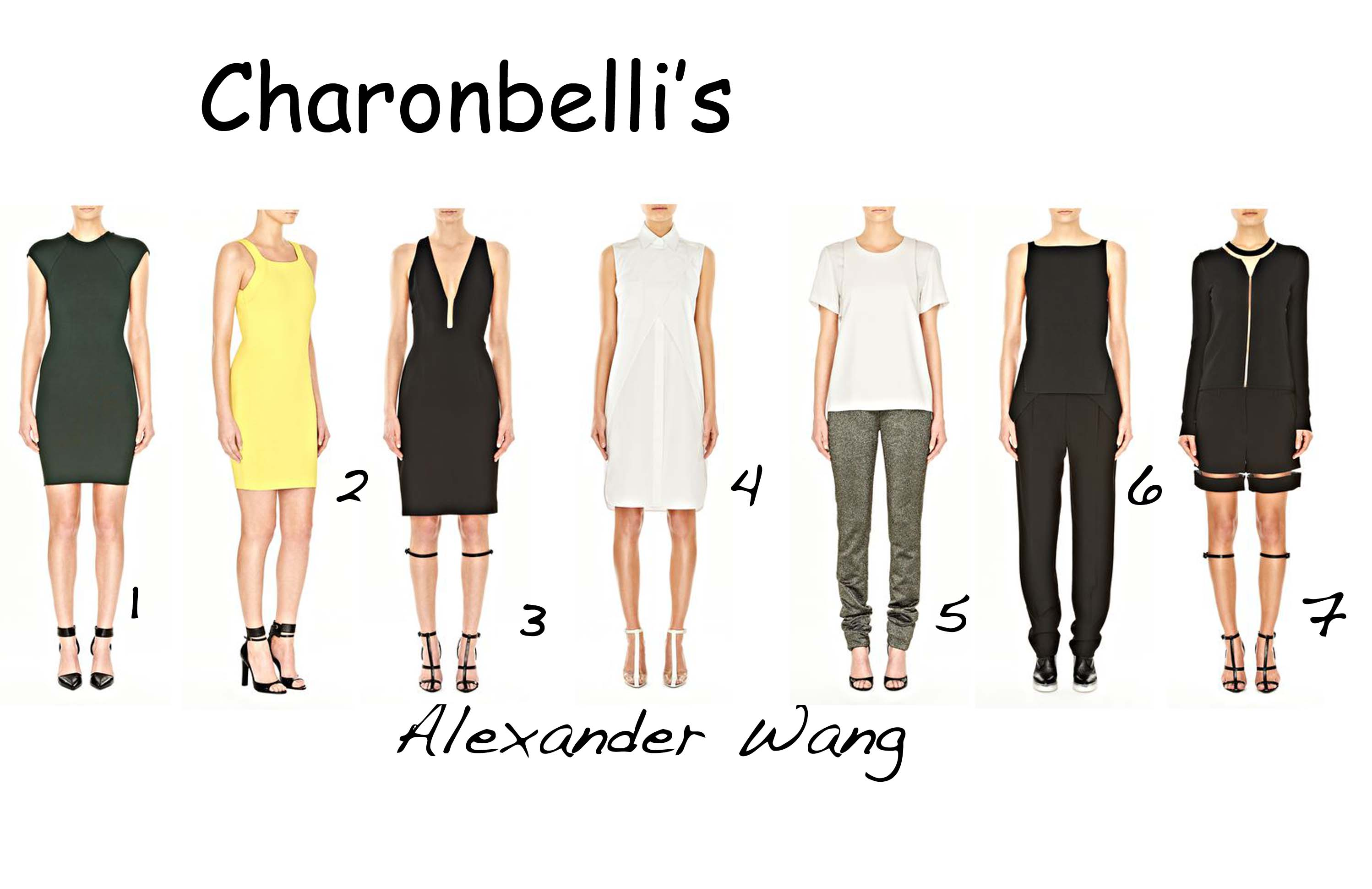Alexander Wang - Charonbelli's blog mode