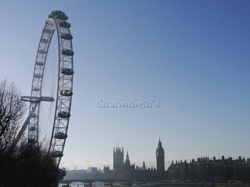 london-eye-se-promener-dans-londres-charonbellis-blog-lifestyle